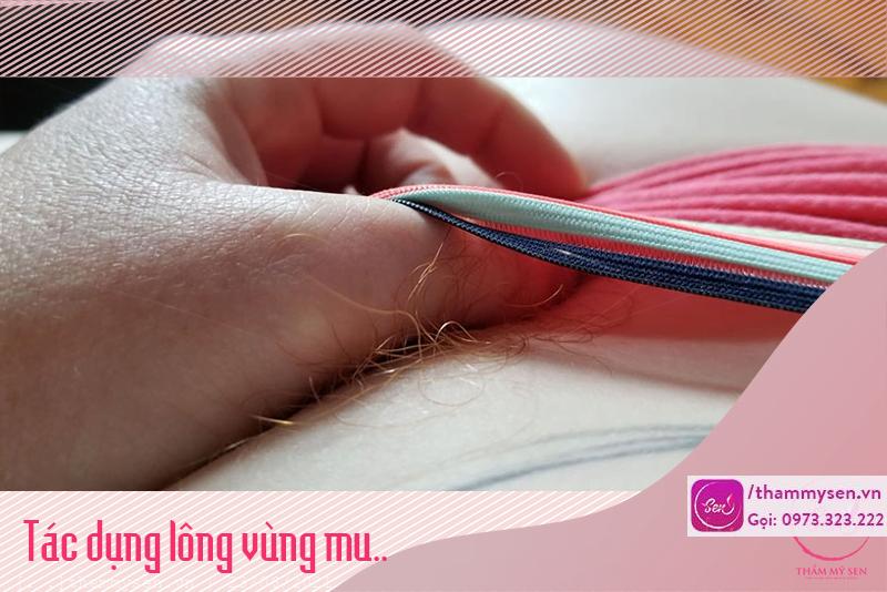 Tác dụng của lông mu một phần là để bảo vệ cơ thể